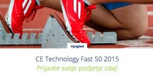 Deloitte web size